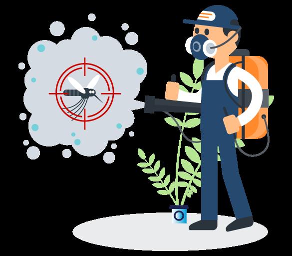 Professional Pest Control Como